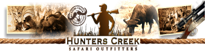 Hunting Safaris near Polokwane